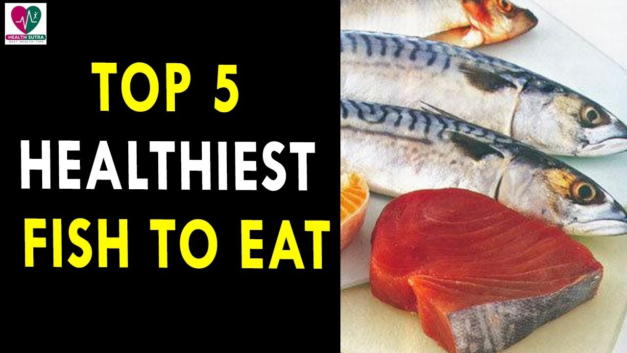 Top 5 healthiest fish to eat health sutra best health for What fish is healthy to eat