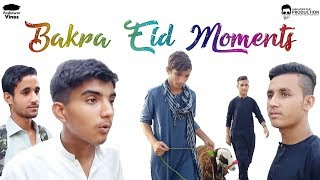 Bakra Eid Mandi Moments Pashto Funny video By VIP Partners & JF Production 2019