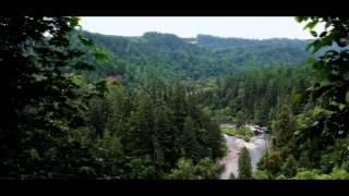 Bob Mould - The Descent OFFICIAL VIDEO