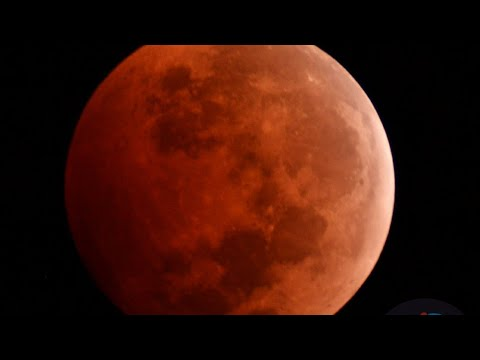Eclipse Lunar EN VIVO 1