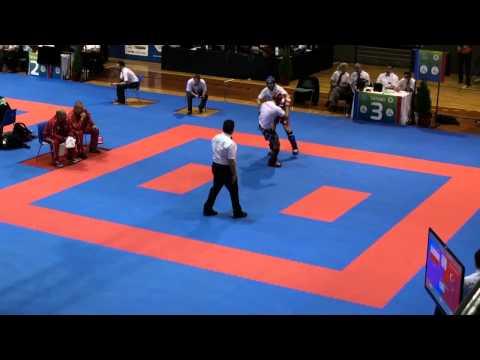 WAKO Kickboxing - EC 2014 - FINALS KL -74kg - Alemdag(TUR) - Wronski(POL)