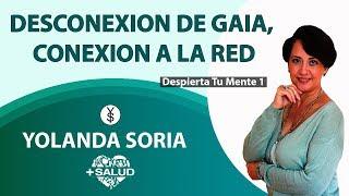 DESCONEXION DE GAIA, CONEXION A LA RED por Yolanda Soria   Despierta tu Mente 1