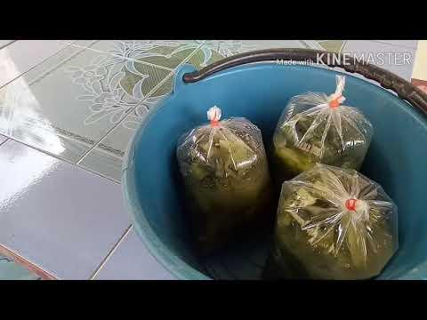 ไปๆขายส้มผักกับยายต๊ะกันค่ะ555ตั่ง3ถุง