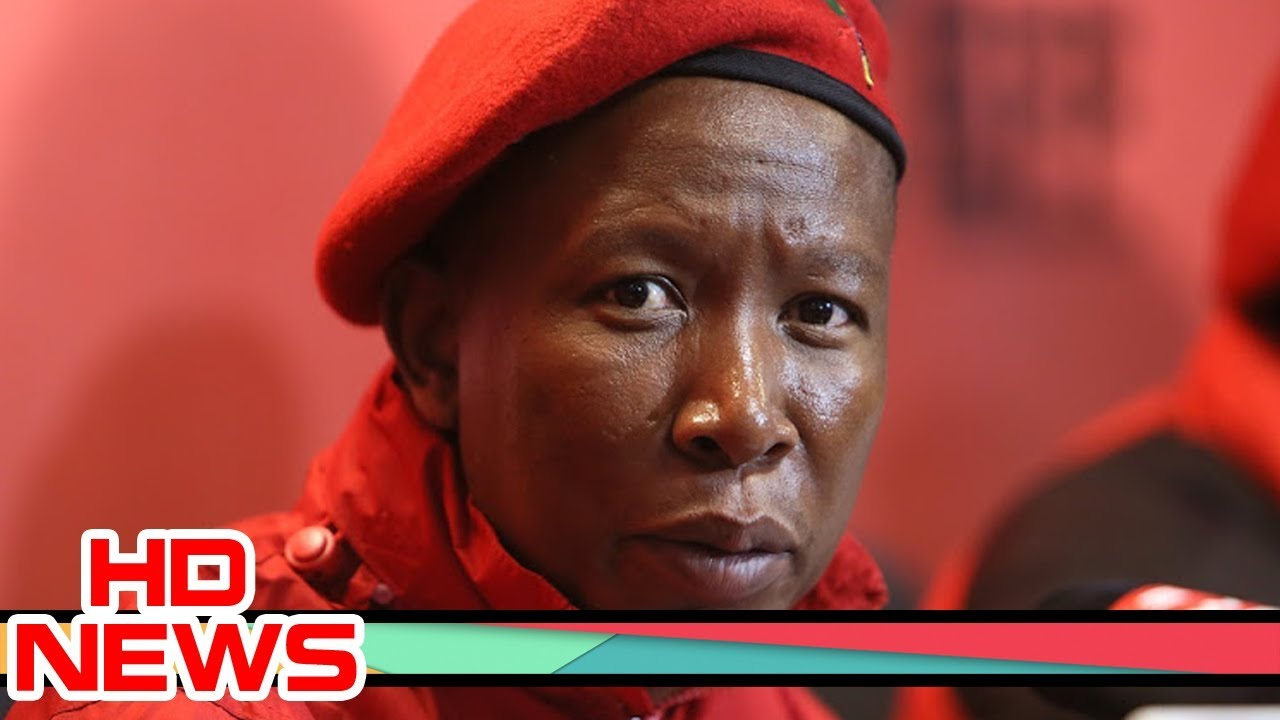 Julius Malema being investigated by SAHRC after DA complaint over racist comments