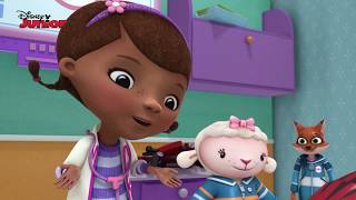 Dottoressa Peluche - Ospedale dei giocattoli - La festa di compleanno - Dall'episodio 105