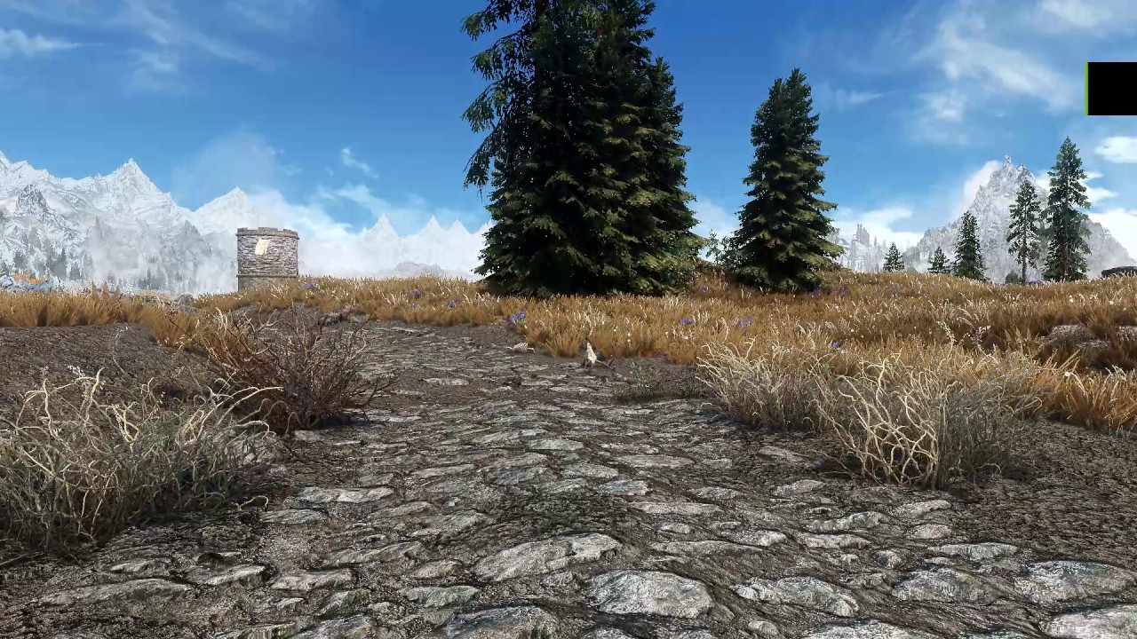 Skyrim Texture Shimmer When Moving
