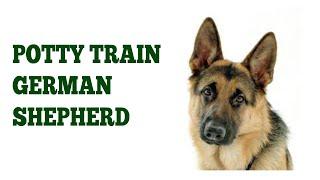 How To House Train German Shepherd