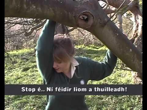 Ní féidir!  (Gearrscannán na Gaeilge 2011)