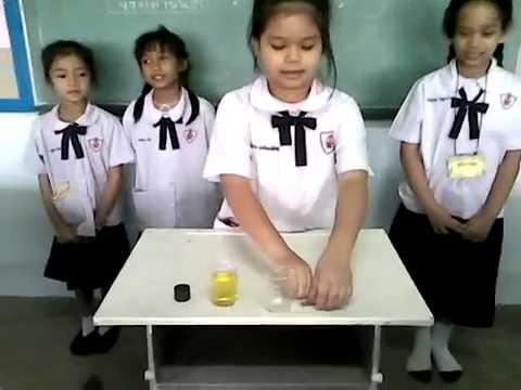 การทดลองเก็บตะปูโดยใช้แม่เหล็ก   ชั้น  ป.2