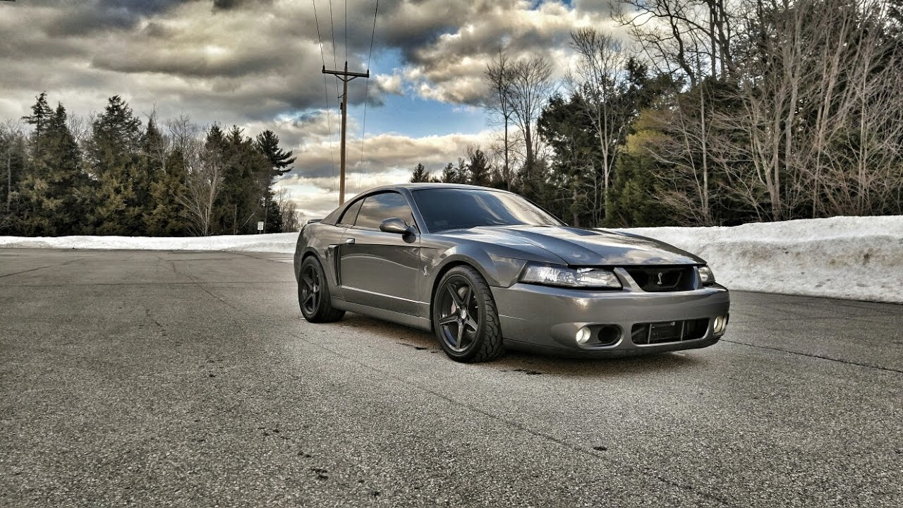 Built terminator 03 cobra mustang over 700 hp to the tires