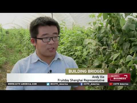 Mexico's berry growers find sweet deal in China
