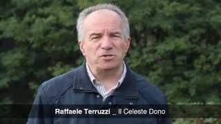 L'apicultura nomade in Italia - Il Celeste Dono Srl
