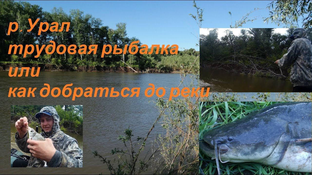 Как добираются до рыбалки - ЖЕСТЬ!!! р. Урал - сом, сопа, голавль 2017