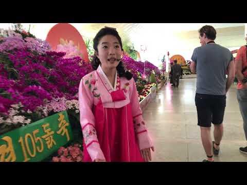 Only in North Korea: Exhibition of Kimilsungia and Kimjongilia