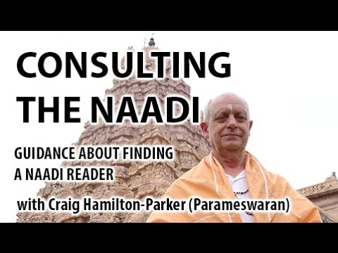 Finding the REAL Naadi Oracle | Dangers, Fakes and the Genuine Readers