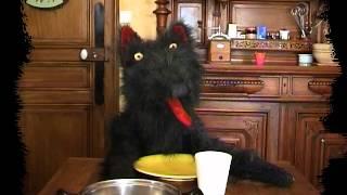 """Chanson du loup par le loup """"spectacle de marionnettes"""""""