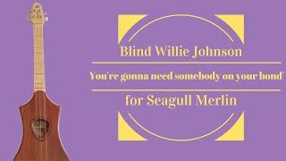 Seagull Merlin -