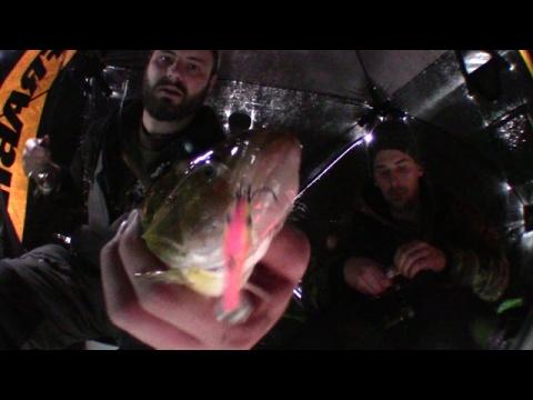 Slammin Perch On Jiggin Raps, Burt Lake Ice Fishing