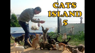 Turkey's Cat Island 5
