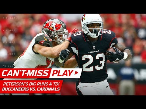Adrian Peterson Leads Arizona Downfield for a TD! | Can