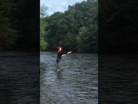 Fly Fishing On The River Nore