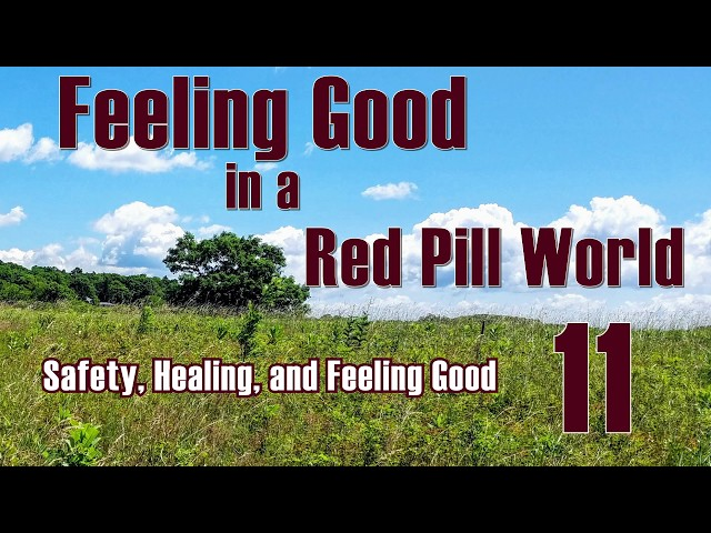Feeling Good in a Red Pill World . --  Safety, Healing, and Feeling Good