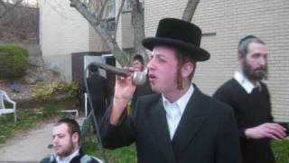 Special Wedding Song By Sruly Green