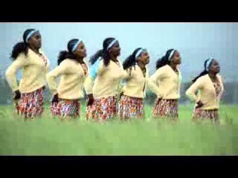 New afan oromo music 2015  Shimele too  Asefa chala