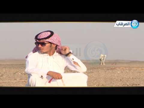 شيلة || يانجد || كلمات - مطر بن محيديد الدلبحي || اداء - سلطان العطاوي