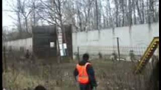 Атака собаки телохранителя