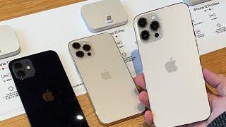아이폰12 미니, 프로 맥스 국내 출시 애플스토어 라이브! 궁금하신거 물어보세요😲