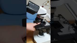 현미경에 대해 배워봐요!! (1편)현미경의 부품과 종류