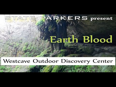 Westcave Outdoor Discovery Center - Guided Tour