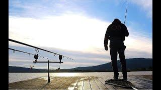 Рыбалка в двух минутах. Ловля карпа летом ( Fishing compilition)