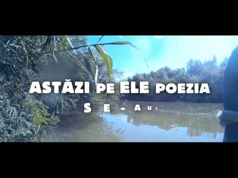 SPAM - DRUMUL (Lyric Video)