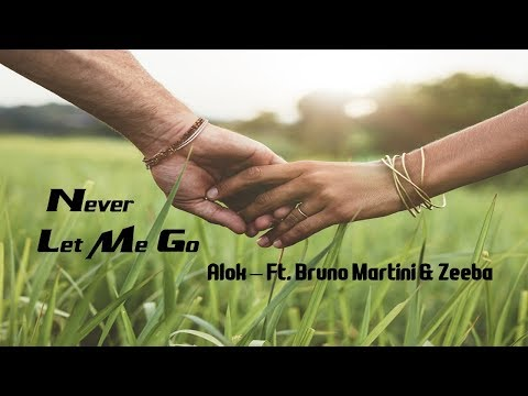 Never Let Me Go - Alok Ft  Bruno Martini & Zeeba tradução