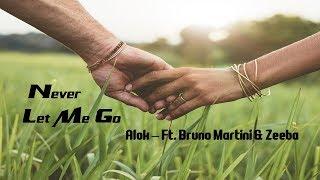 Baixar Never Let Me Go - Alok (Ft.  Bruno Martini & Zeeba) tradução HD