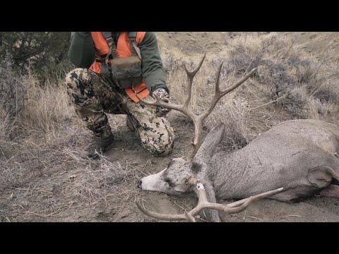 Bullet Hole Antler Buck - Montana Deer Rifle Hunt