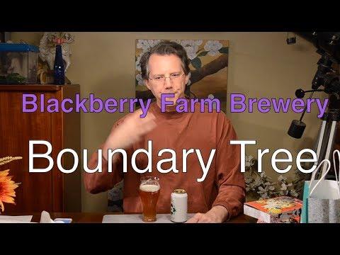 Blackberry Farm Brewery Boundary Tree Review