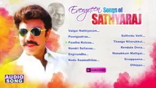 Sathyaraj tamil hits | audio jukebox | evergreen songs of sathyaraj | ilayaraja | spb | music master