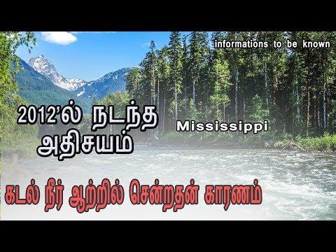 கடல் நீர் ஆற்றில் சென்ற அதிசயம்-பயனுள்ள தகவல்கள் || MISSISSIPPI(energy unleashed)