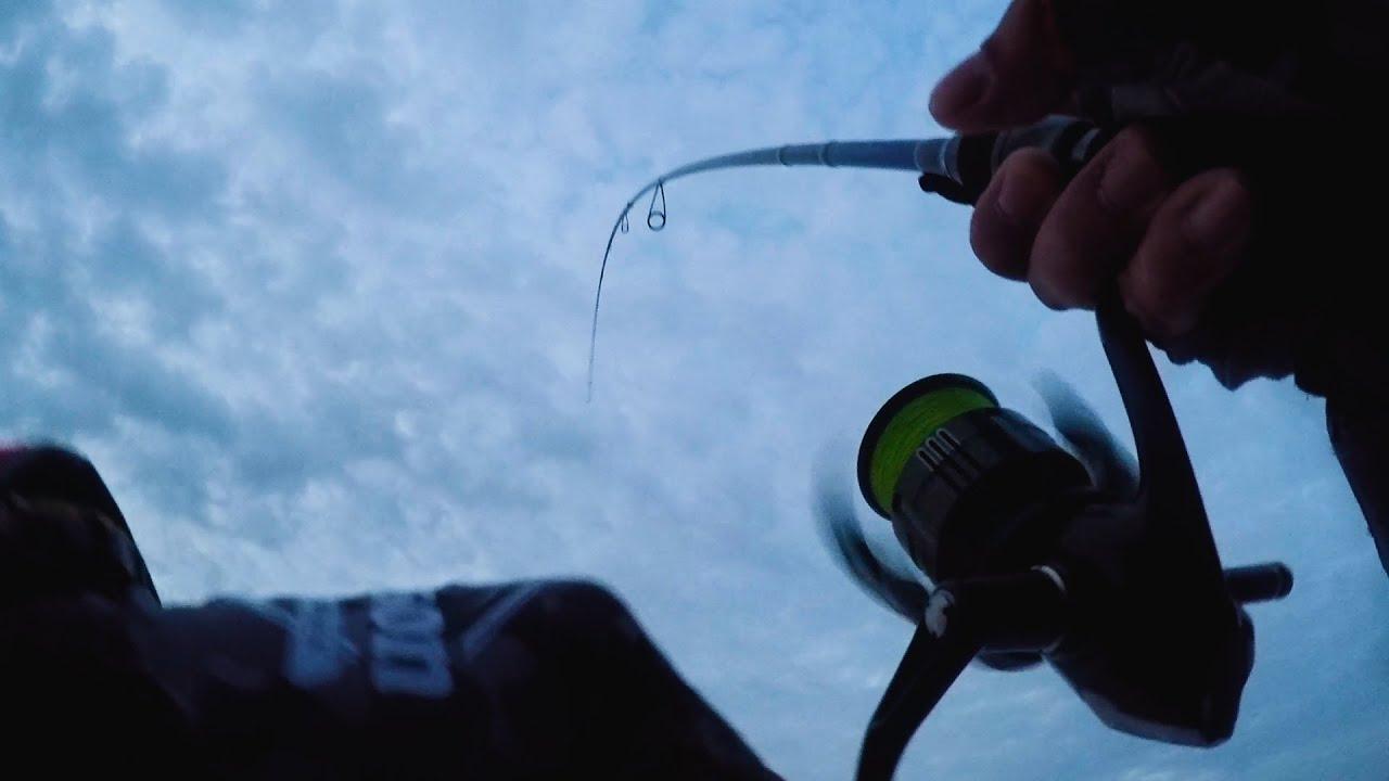 青物・フラットフィッシュ・タチウオを狙いに朝から晩まで釣り