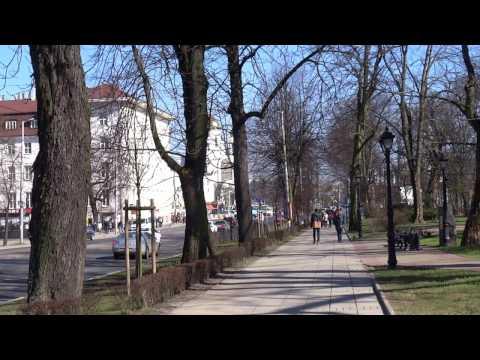 Проспект Мира, сквер Энергетиков, быки и площадь Победы в Калининграде