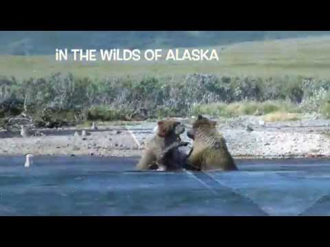 Alaska Kenai Peninsula Frontier Adventure
