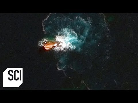 What Is This Strange Object in the Ocean? | What on Earth?