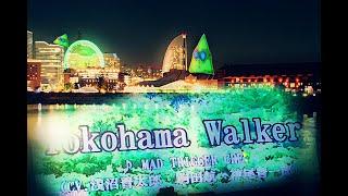 【カラオケ】ヒプノシスマイク Yokohama Walker / MAD TRIGGER CREW【歌ってみた】