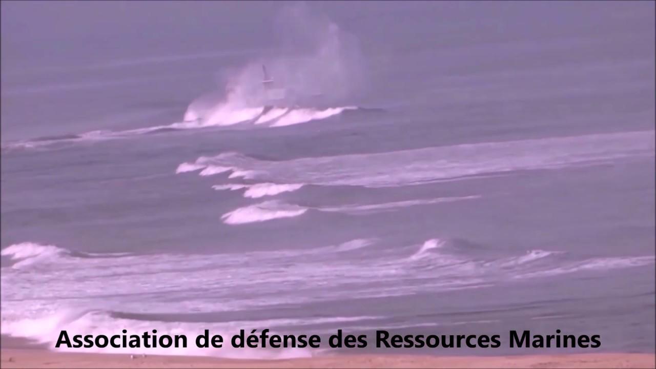 ADRM présente ses actions principales au salon de la pêche en mer 2020 à NANTES.