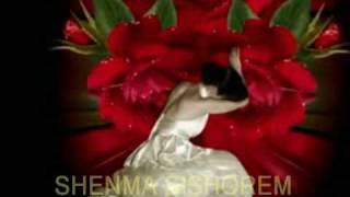 ARIE DZANSHVILI - SHENMA SISHOREM 2009.TEL.0544-546762