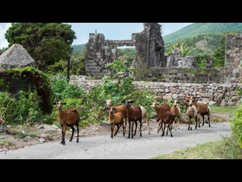 St Kitts Nevis Trip19
