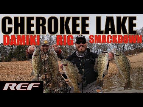 CHEROKEE LAKE: Winter Damiki Rig Bass Fishing Smackdown